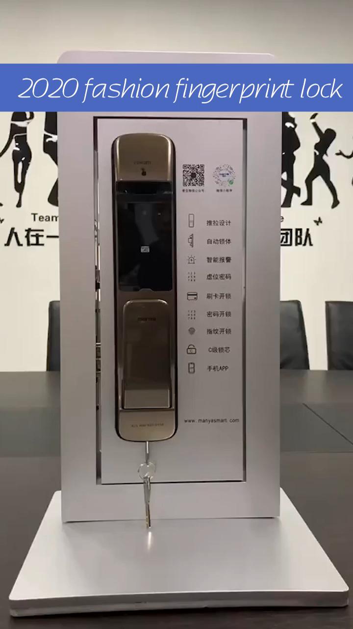 Allamoda 2019 Desain Baru Tarik Push Menangani Penuh Otomatis Sidik Jari Digital Door Lock