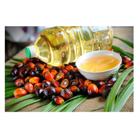 100% Healthy Palm Cooking Oil