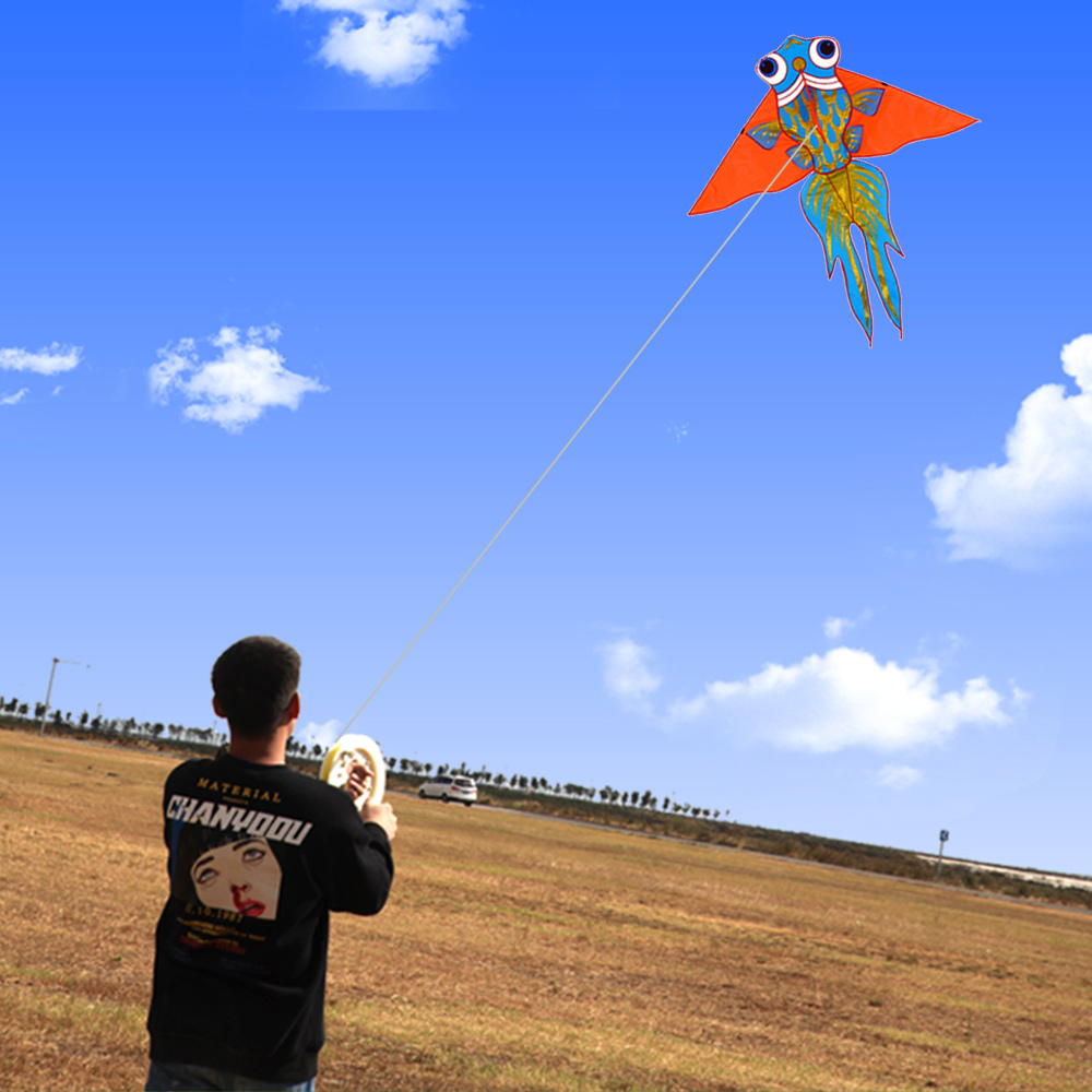 custom funny toys Outdoor sports  easy flying cartoon fish shape kite for kids