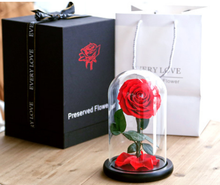 <span class=keywords><strong>Valentijnsdag</strong></span> <span class=keywords><strong>Geschenken</strong></span> D12cm H22cm Glas Dome Belle Enchanted Bewaard rose bloem Forever Rozen hoofd in Glas Dome