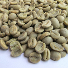 Quality Whole Raw Coffee Beans Whole Arabica Green Coffee Beans