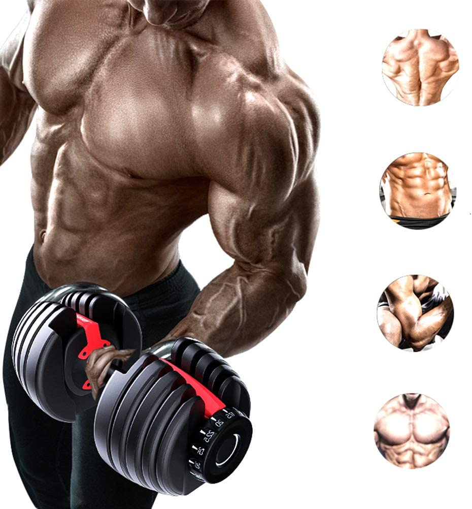 Adjustable Dumbbell Set Gym Bicep Weight Training Equipment Body Building Automatically Dumbbell Training Arm Muscle Fitness