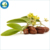 Top Quality & Competitive Price of Jojoba Oil - Refined
