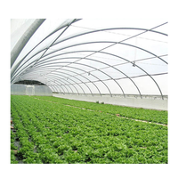 Agricultural 50x8m Single-Span Type Tunnel Greenhouses