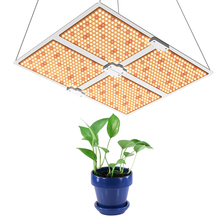 GERYLOVE 450 480 วัตต์ LED Grow Light <span class=keywords><strong>QUANTUM</strong></span> <span class=keywords><strong>BOARD</strong></span> Samsung LM301B ชิป LED LED Meanwell DRIVER