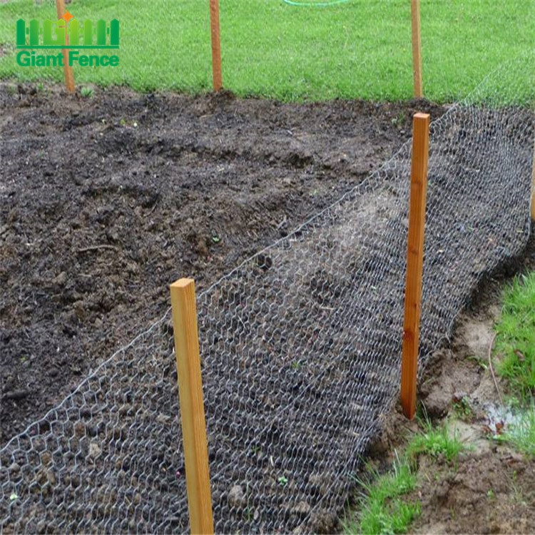 High Quality Galvanized Hexagonal Mesh Fence Chicken Wire