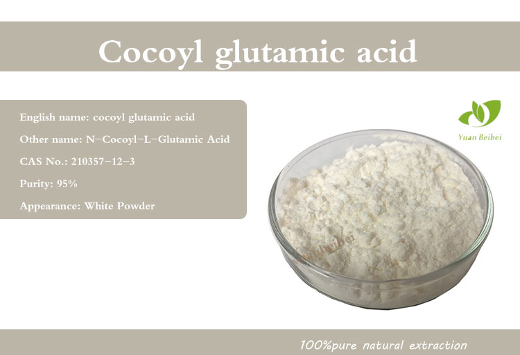 n cocoyl l glutamic acid cocoyl glutamic acid for washing CAS: 210357-12-3