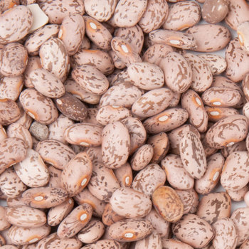 Dried Pinto Beans (Best Quality and Prices)