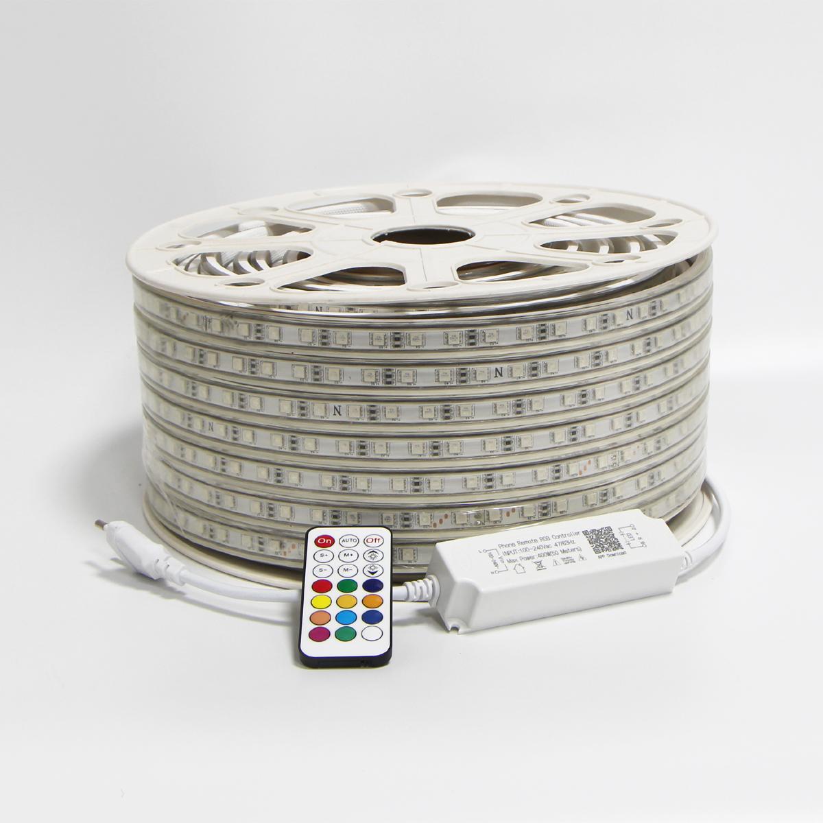 220V 110V RGB LED Strip Lights 5050 50m 100m multicolor flexible roll IP65 Outdoor Waterproof Dual Color Rope Led Light Strip