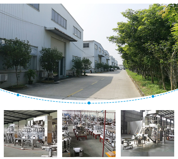 Chinese factory direct sales packing machines for frozen products