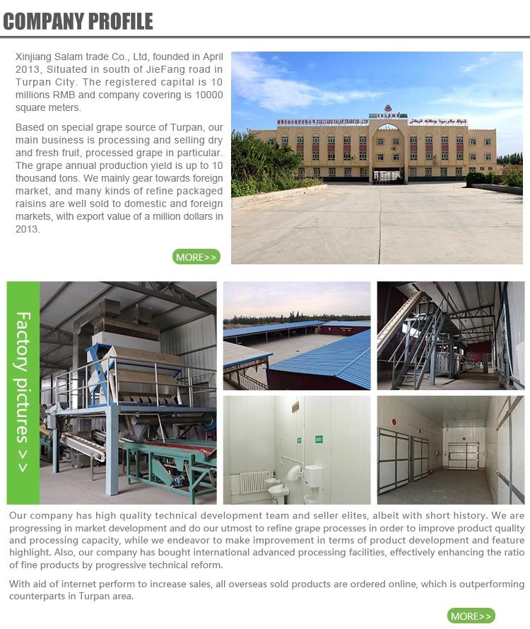 China Venta caliente de la fábrica de Xinjiang azufaifa roja