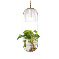 Modern Iron LED glass lamp hanging green plant chandelier Pendant light for balcony corridor