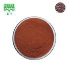 Natural High Purity OPC 95% Grape Seed vitis vinifera extract powder