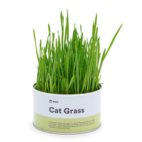 DIY kitten Pet Health Care cat snack natural can helps the cat digest Canned pet cat grass seed