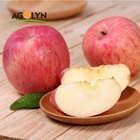 Excellent size and sweet size china farm Fuji apple