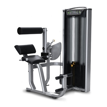 Commercial online shopping impact gym fitness equipment back extension exercise machine for sale