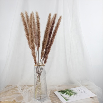 Wholesale Factory Price real Eternal preserved trim flowers flores Lasting Long Dried Small Pampas grass for decorations