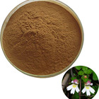 100% Pure Eyebright Herb Extract / Euphrasia Officinalis Extract