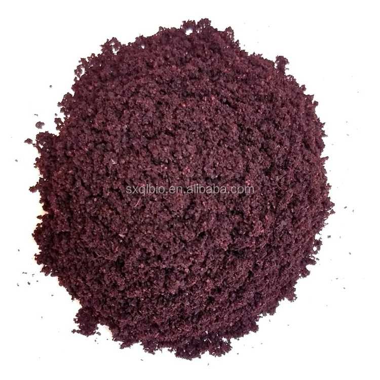 Food Additives Freeze-Dried Organic Acai Berry Extract Powder