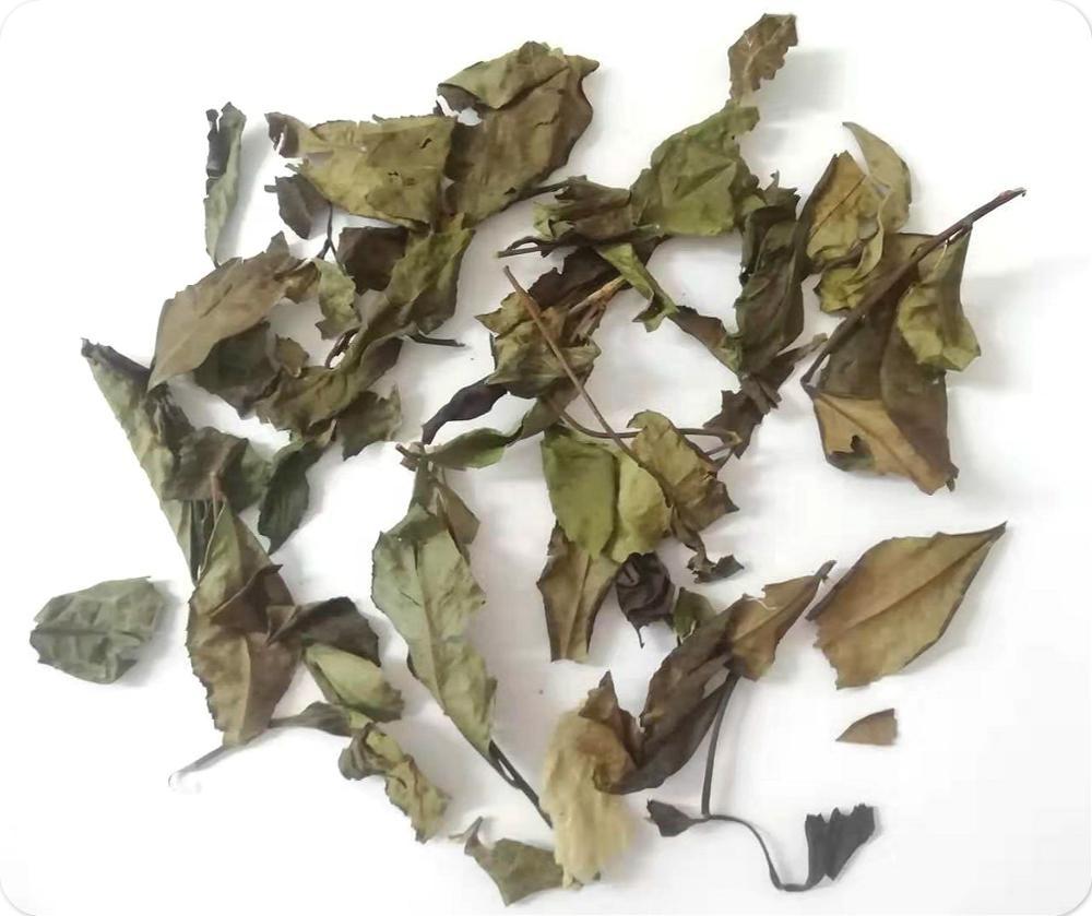 Fujian Shoumei Chinese organic slimming white tea - 4uTea | 4uTea.com