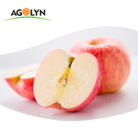 2020 new crop fresh fruits red Fuji apples