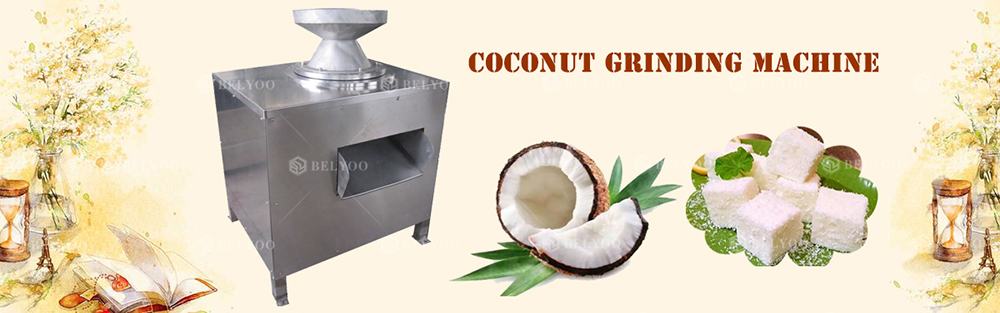 Good quality small coconut meat grater grinding machine electric coconut grating machine coconut grinder machine