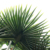 High Temperature Resistance Anti-Freeze Artificial Tropical Palm Tree Leaves For Decoration