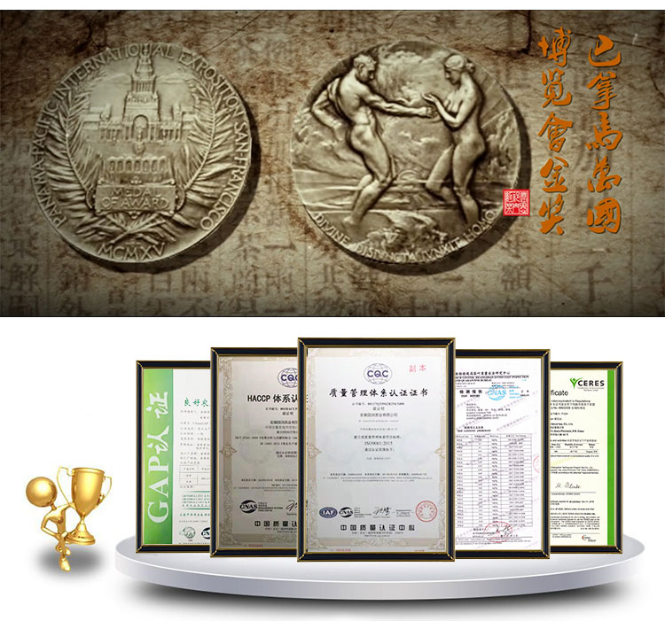 Yüksek kaliteli Tieguanyin çay çin zayıflama çayı zengin oolong çay