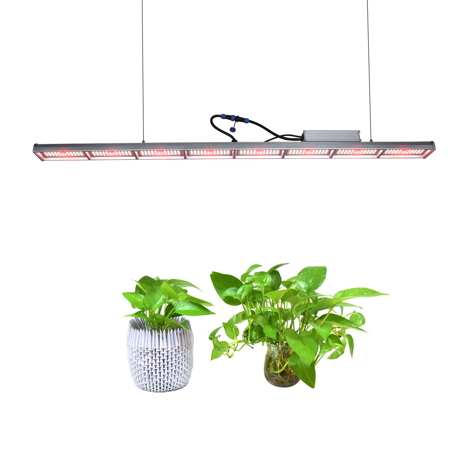 Indoor Outdoor Greenhouse Grow Lights Full Spectrum Led Light Bars for Vertical Farming Seedling Veg and Bloom