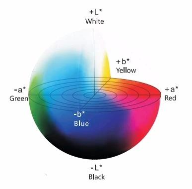 color space.webp.jpg