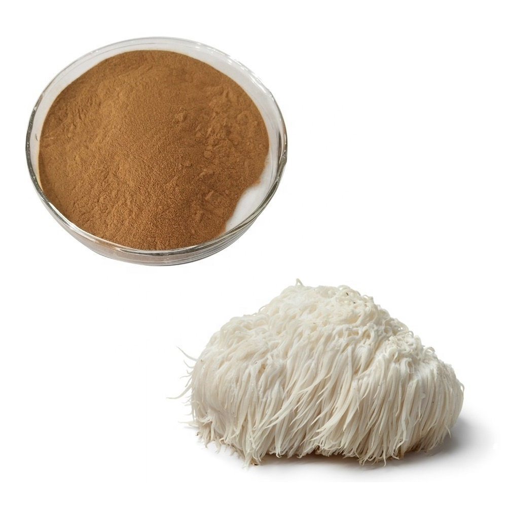 Free Sample Natural Mushroom Powder Lion's Lions Mane Extract