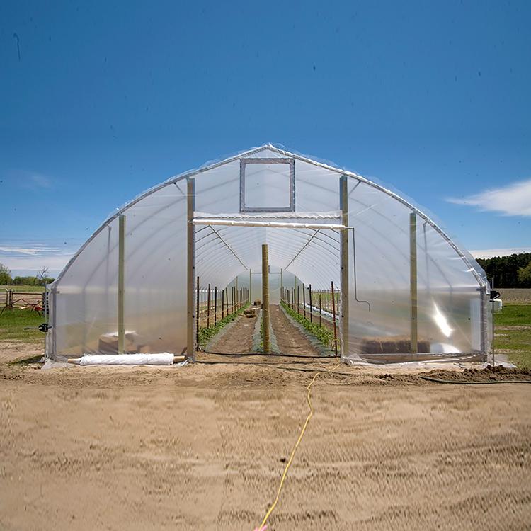 One One Cheap Hobby Vegetable Garden Flower Greenhouse