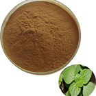 high quality Natural oregano leaf extract