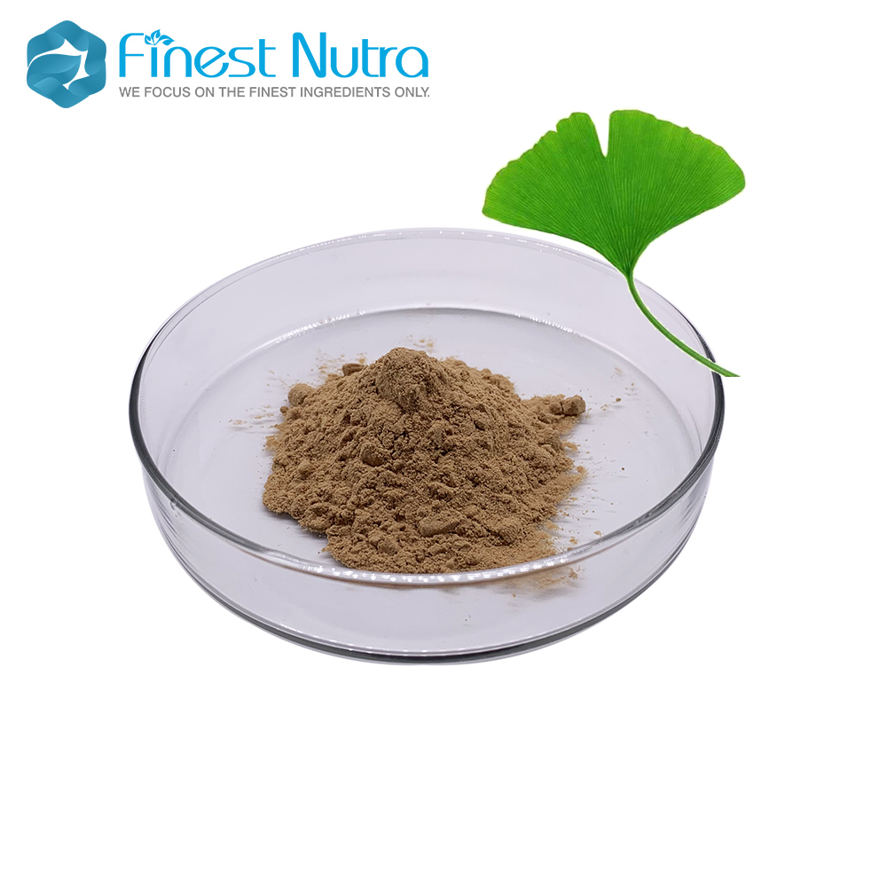 TOP grade ginkgo biloba extract ginkgo flavones glycosides 24 6 for hot selling