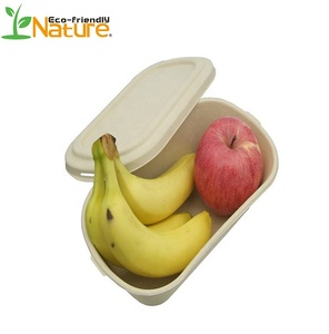 800 ML 100% Compostable Disposable Bagasse Sugarcane Food Box Biodegradable