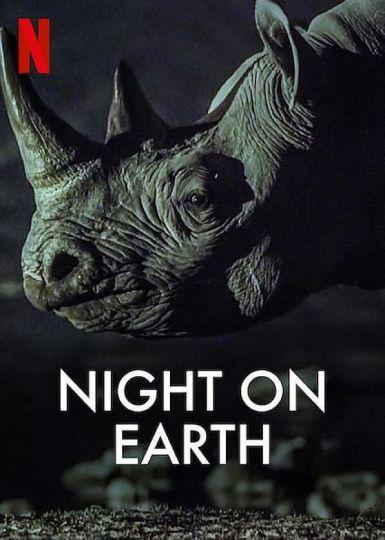 地球的夜晚