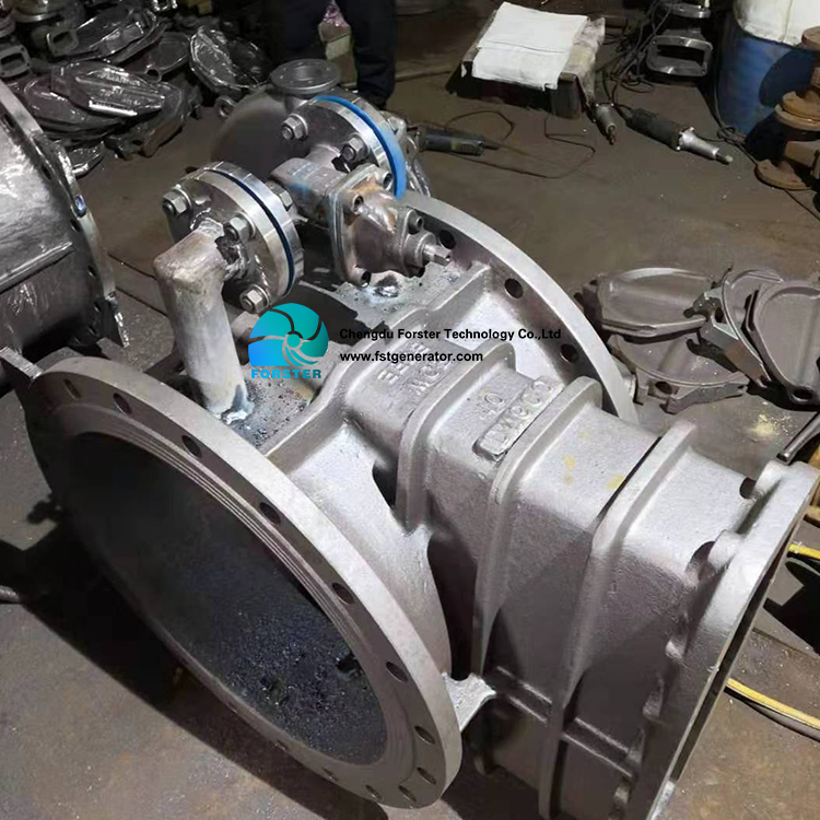 Hydroelectric Hydro Power Generator Water Turbine Electric Generator From Forster