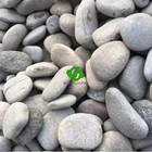 Nature Grey Pebble Stone Gravel for Landscaping