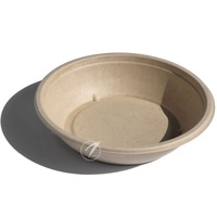 High quality biodegradable disposable sugarcane pulp bowl for pasta
