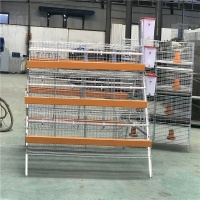 China chicken cage manufacturers design a type chicken cage for layer