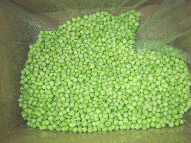New green peas wholesale IQF frozen pea bean