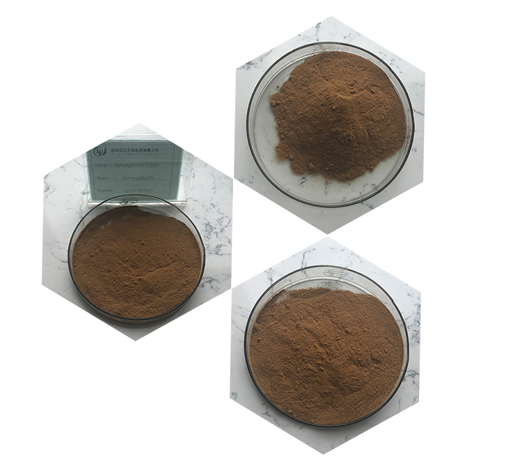 Supply 5% Withanolide Powder Ashwagandha Extract