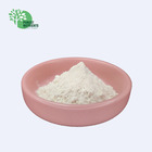 Supply Bitter Apricot Seed Extract 98% Amygdalin Powder