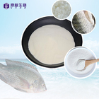Food Reliable High Quality Elastin Fish Hydrolyzed Water Soluble Skin Whitening Fine Collagen Powder