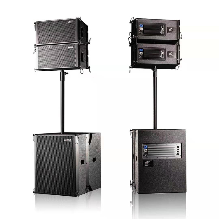 Vera 10 Line Array Speaker