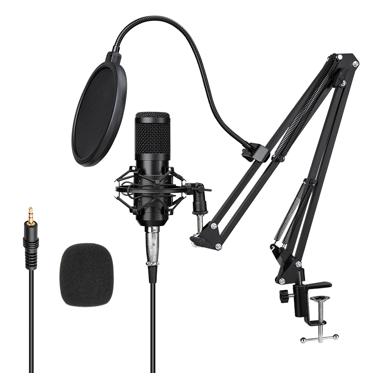 Made In China Best Bm 700 Microphone Stand