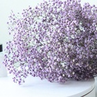 Flower Baby Breath Flowers Factory EXW Price Preserved Baby's Breath Flower Arrangement Preserved Gypsophila For Home Decoration