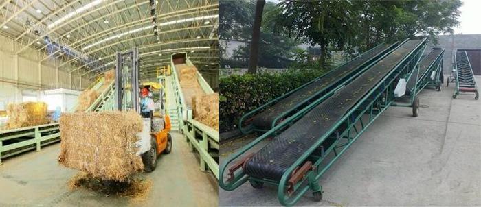 conveyor belt1.jpg