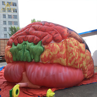 The human body scientific models giant inflatable brain entrance