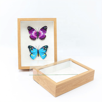Wholesale creative diy paper frame dried flower frame plant butterfly specimen decoration 12x16inch